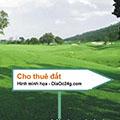 Cho thuê kho bãi đất trống MT đường Nguyễn Văn Quỳ, Quận 7, từ 1000m2,...