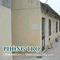 Cần cho thuê phòng tại trung tâm Q1, dt: 18m2, giá USD250/tháng