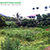 Bán đất Đức Trọng, Lâm Đồng 58 ha, 5 tỷ
