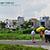 Bán đất đường số 7, P. Hiệp Bình Phước, Q. Thủ Đức, DT 7mx20m, giá 1,5 tỷ, thổ cư